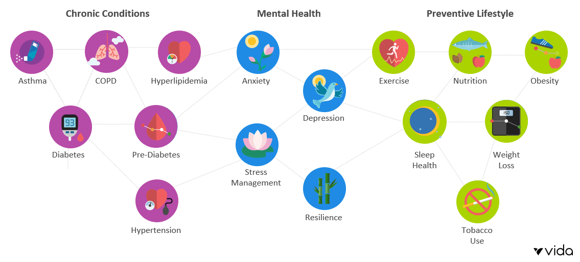 How Vida addresses chronic conditions and mental health